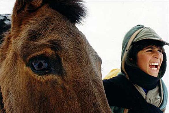 Un Temps pour l'ivresse des chevaux